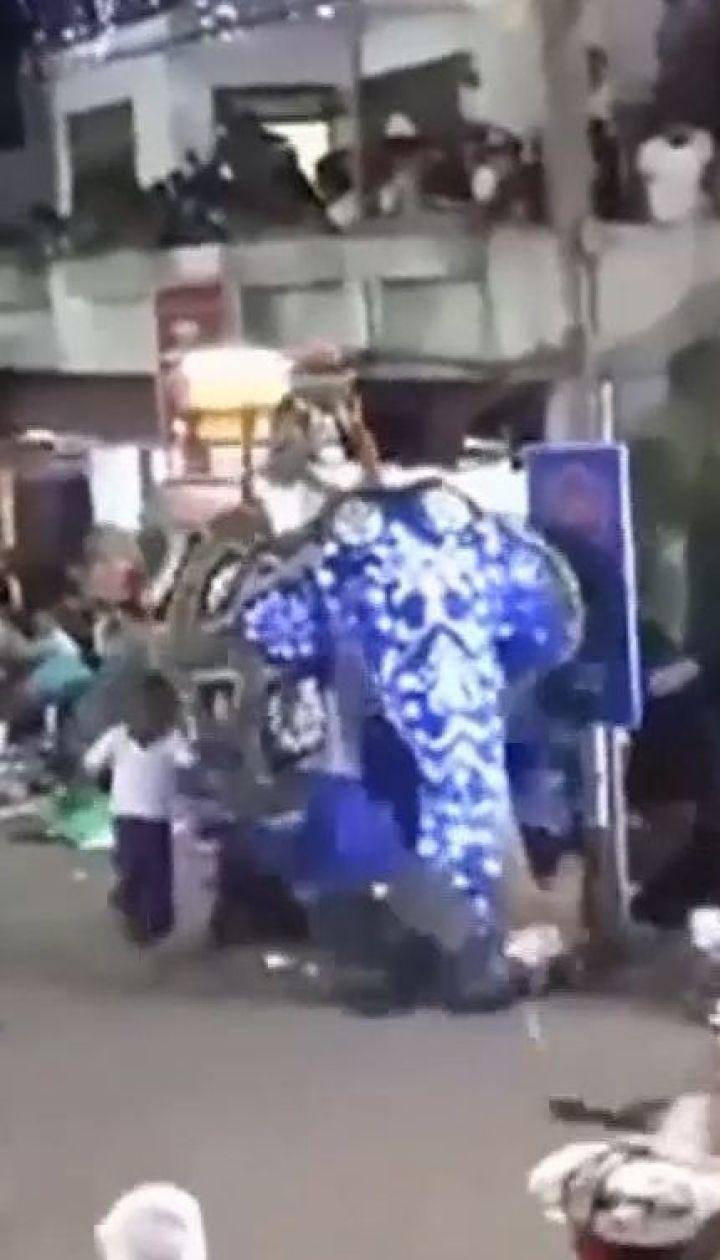 Під час нічного карнавалу в столиці Шрі-Ланки два слони потоптали людей
