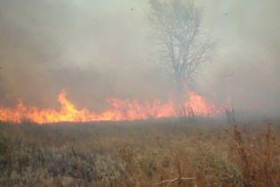 На Одесчине в стоге сена сгорел 5-летний ребенок