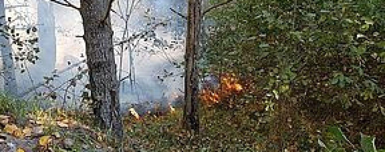 В селе на Полтавщине во время горения сухой травы погиб 82-летний мужчина