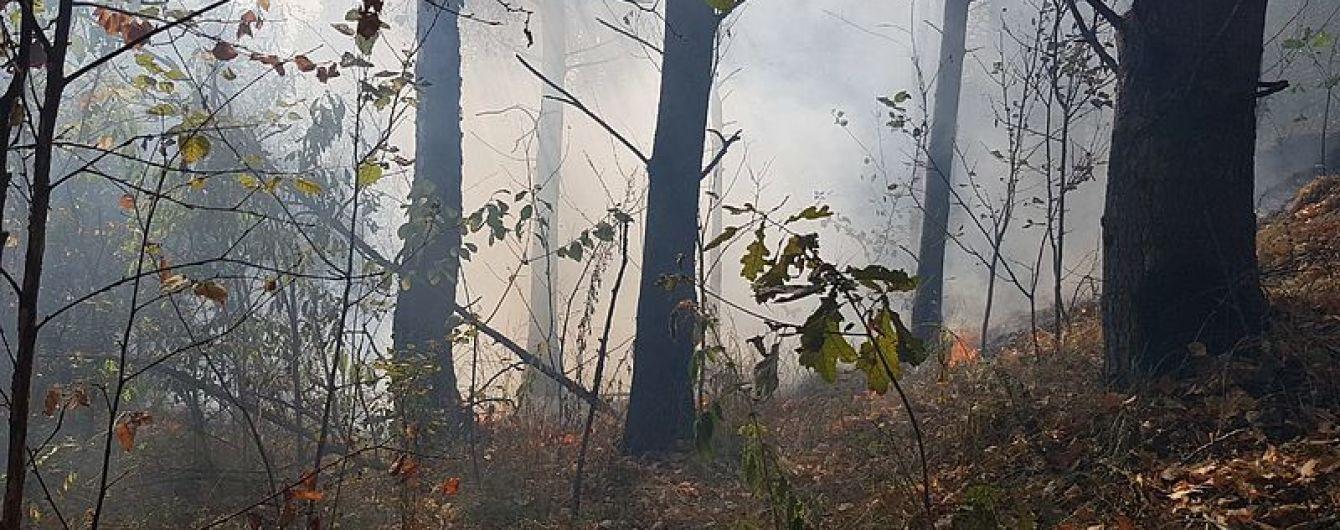 На Житомирщине лесные пожары охватили 100 гектаров территории