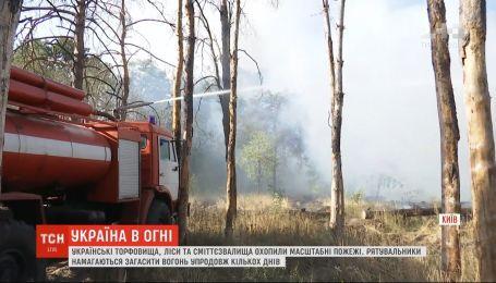 Україна в огні: у більшості регіонів панує найвищий рівень пожежної небезпеки