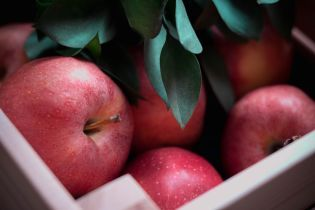 На українських ринках зросла вартість яблук