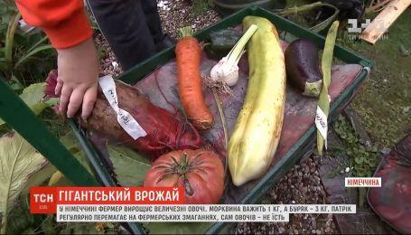 В Германии фермер выращивает огромные овощи
