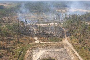 Пожар вблизи Калиновки: спасатели ликвидировали возгорание  и показали его последствия