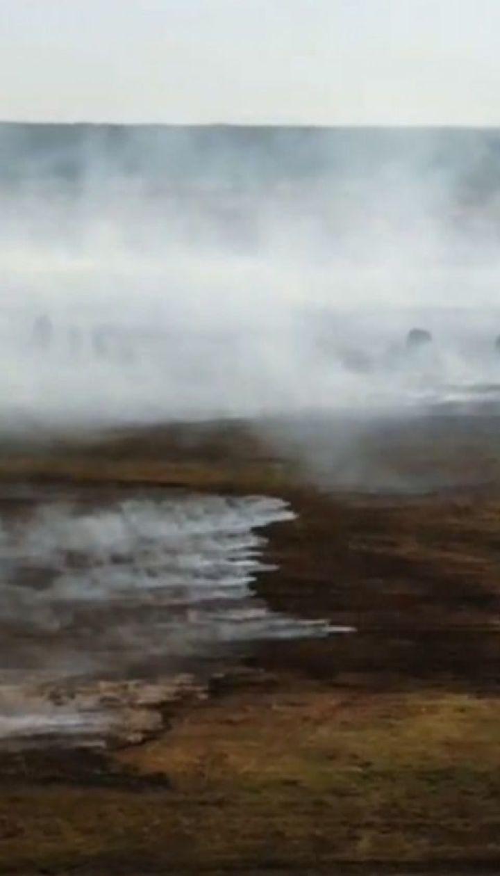 Три дня подряд спасатели не могут преодолеть пожар на торфяниках в Ровенской области