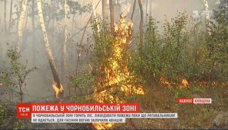 Біля Чорнобиля палають гектари лісу: рятувальники задіяли авіацію