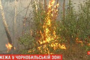 Пожар в Чернобыльской зоне: из-за сильного ветра вспыхивают все новые очаги