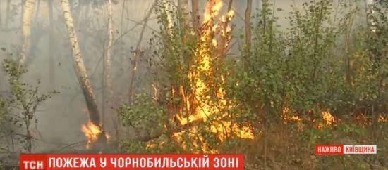 Пожежа у Чорнобильській зоні: через сильний вітер спалахують все нові осередки