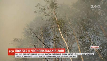 В Чернобыльской зоне вспыхнуло около 4 гектаров леса