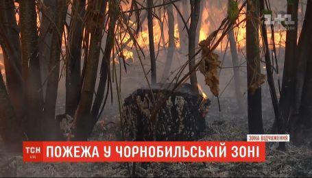 Площа лісових пожеж у Чорнобильській зоні збільшилася майже втричі