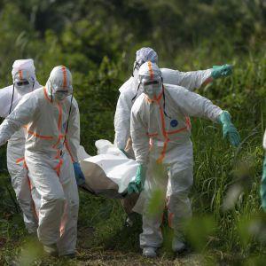 """Гарячка західного Нілу, віруси Зіка та Ебола, """"агент Х"""": інфекціоністи назвали загрози, значно страшніші за коронавірус"""