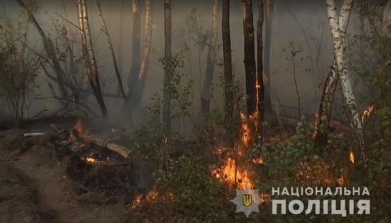 Чорнобильський ліс спалахнув через жіночу помсту - поліція
