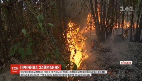 До 5 лет за решеткой может провести женщина, которая могла вызвать пожар в Чернобыльской зоне