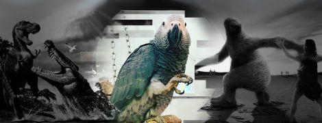 """Ученые заподозрили мегапопугаев в каннибализме и нашли пингвина-монстра: последние """"гигантские"""" открытия"""