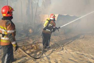 Свидетели пожара в Гидропарке рассказали с чего все началось