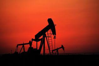 Цена нефти марки Brent может рухнуть до $5 за баррель - Bloomberg