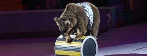 Уперше в Україні: суд заборонив міському цирку використовувати тварин
