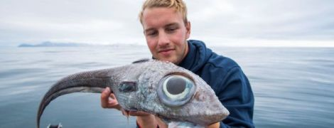 В Норвегии рыбак поймал рыбу-монстра с глазами размером как две луковицы