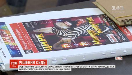 Суд запретил демонстрировать представления с участием диких зверей в Одесском цирке