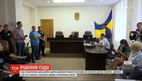 В Одессе суд запретил местному цирку работать с дикими животными