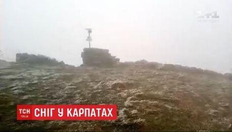 На горе Поп Иван в Карпатах выпал первый снег