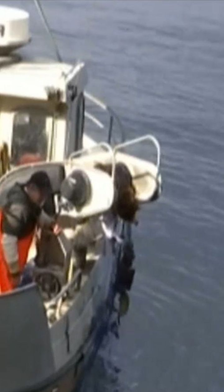 З однієї із найбільших рибних ферм у Норвегії втекли понад 10 тисяч лососів