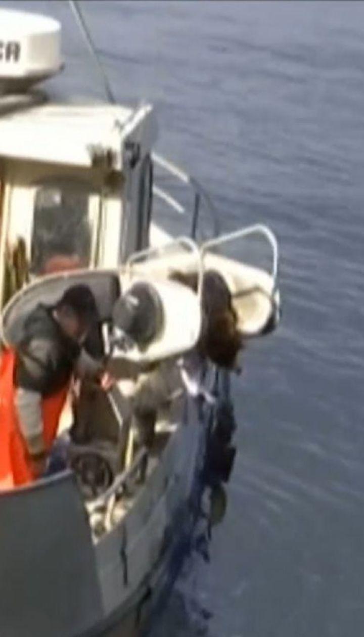 С одной из крупнейших рыбных ферм в Норвегии сбежали более 10 тысяч лососей