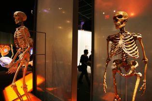Все современные люди, включая жителей Африки, имеют ДНК неандертальцев – исследование