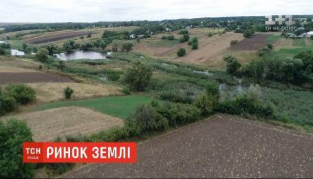 Правительство обнародовало проект закона о рынке земли для общественного обсуждения