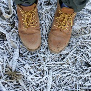 Сильные заморозки и шквальный ветер. Украинцев предупредили об ухудшении погоды