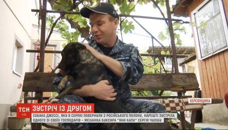Звільнений моряк Сергій Чуліба зустрівся з собакою Джессі після 10 місяців розлуки