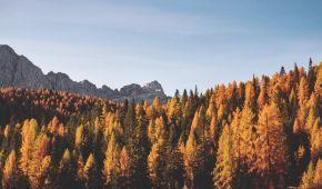Прогноз погоды на 22 октября: в Украине будет по-осеннему тепло, температура — до +21