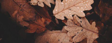 Погода на вівторок: в Україні тримається осіннє тепло
