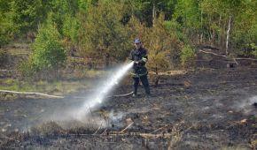 Под Киевом горят торфяники - в одном из районов столицы ухудшилось состояние воздуха
