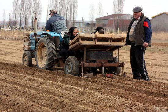 Всього 19% українців готові до запровадження продажу землі