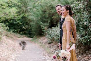 В США еноты ворвались на свадьбу и украсили праздничные фото молодоженов