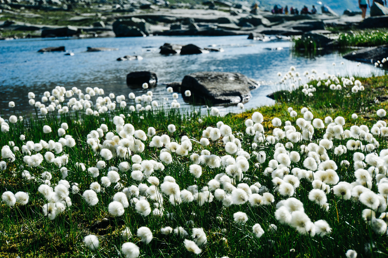 Норвегія, для блогів_8