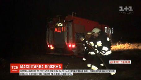 Из-за поджога или неосторожности в Днепропетровской области выгорело 30 гектаров сухой травы