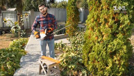 Догляд за малиною за смородиною восени - Осінь на дачі зі Stihl