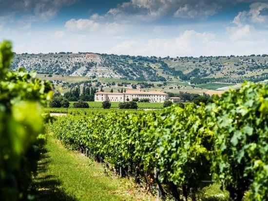 TripAdvisor назвав найкращі готелі для поціновувачів вина