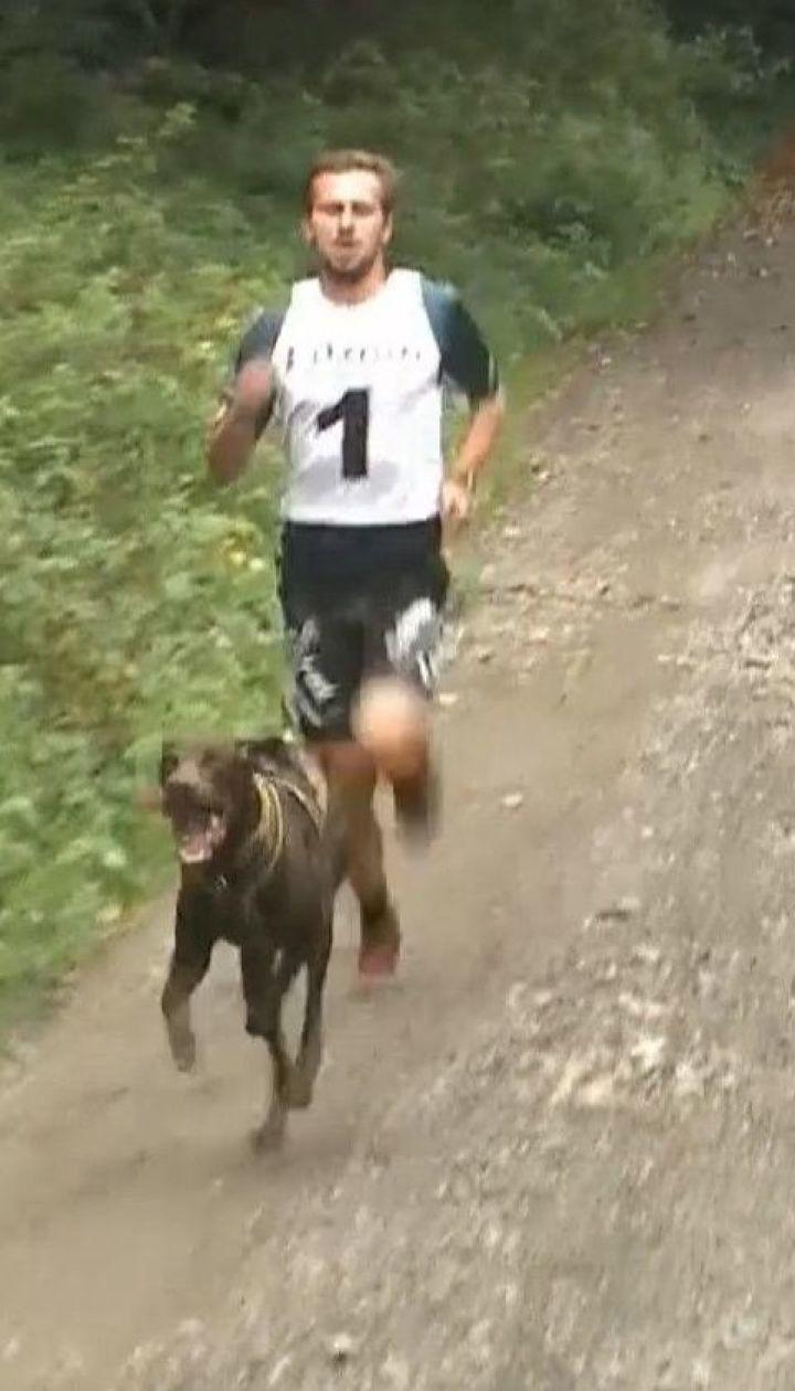 Собаки на скорость тянули велосипеды и самокаты вместе с хозяевами в Словакии