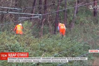 Поваленные деревья и хаос на железной дороге: разрушительная непогода в Европе унесла жизни трех человек