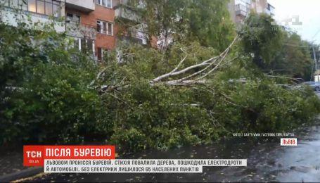 Из-за непогоды обесточены более сотни населенных пунктов в Украине