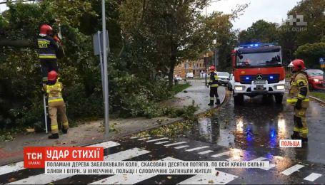 Шторм бушевал в Европе: вследствие падения деревьев погибли 3 человека