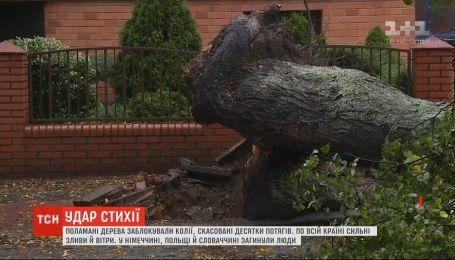 В результате падения деревьев во время шторма в центральной Европе погибли три человека