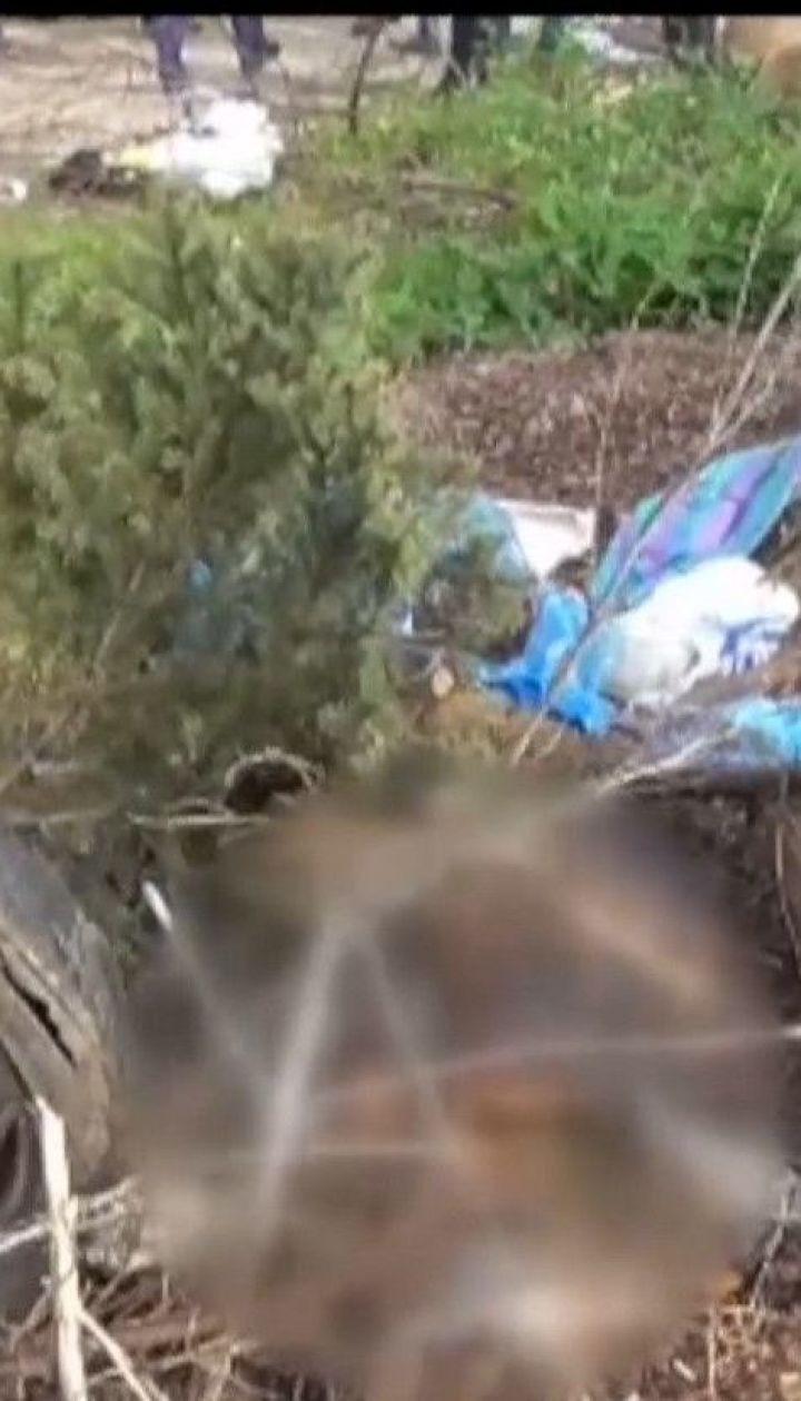 В разгар ссоры женщина убила родную мать и увезла тело на заброшенный недострой