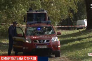 В Словакии на мальчика упало дерево, он погиб