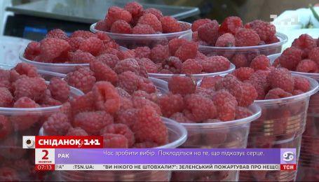В Украине заканчивается сезон малины - Экономические новости