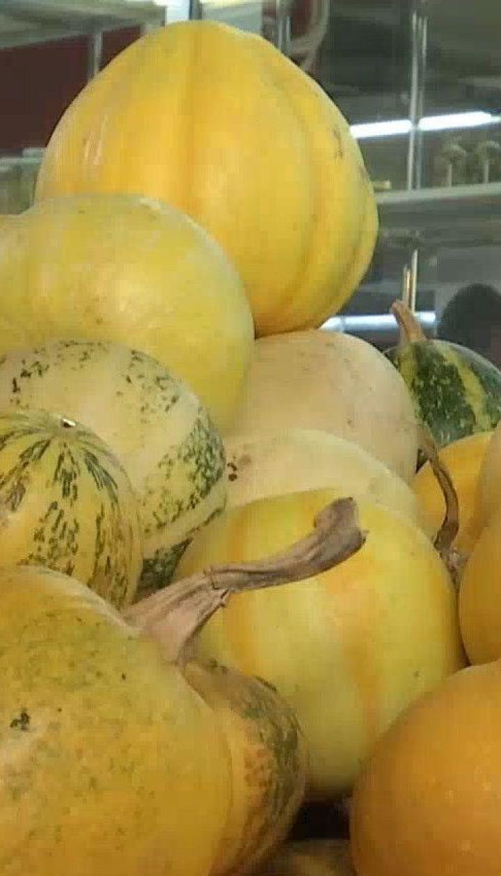 Які ціни на гарбуз цього року і чим корисний осінній овоч
