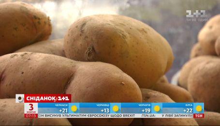 Цены на картофель продолжают расти - экономические новости